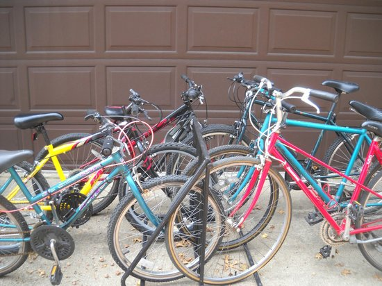 Cedaroma Lodge: Enjoy a Cedaroma 6-pack! Bikes available for free. helmets too.