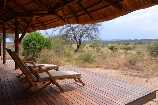 Oliver's Camp, Asilia Africa: view from tent