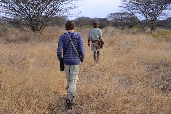 Oliver's Camp, Asilia Africa: bush walk with Louis at Oliver's Camp