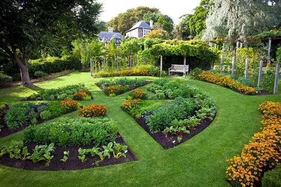 Dromana, Avustralya: Visit our famous vegetable parterre