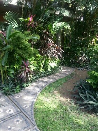Three Brothers Bungalows: garden in front of room