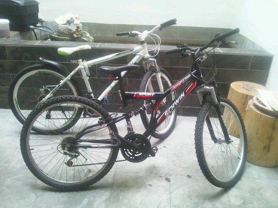 Guest Inn Muntri : Rent a bicycle