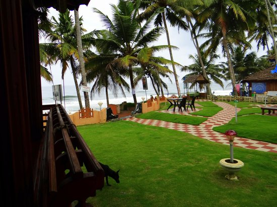 Black Beach Resort: Lawn just out of the room