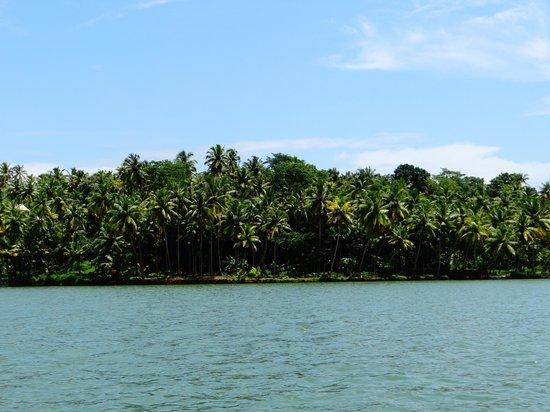 Black Beach Resort: Kappil Lake