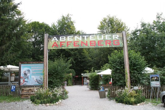 Abenteuer Affenberg tt.: Abenteuer Affenberg