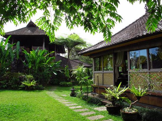 Bali Mountain Retreat: Surrounding