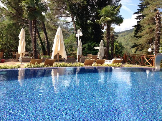 Limak Thermal Boutique Hotel: Outdoor pool