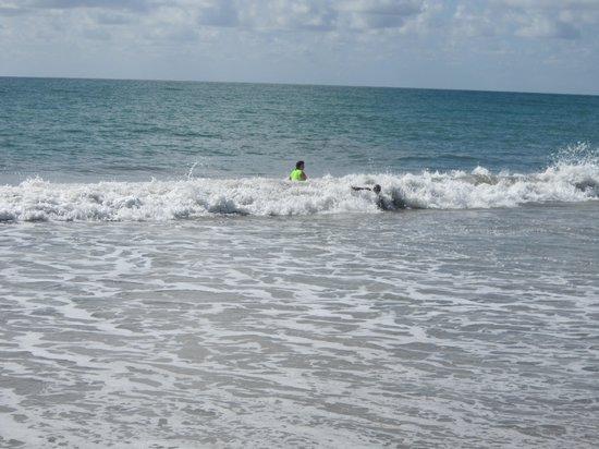 Praia De Maracaipe: Apaixonado por esse mar...
