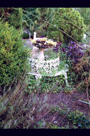 Maison LaVigne: Weeds overtaking and covering garden furniture