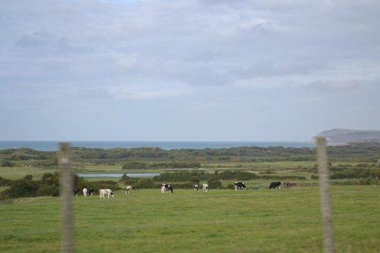 Ferme Equestre de Warincthun : paysage avec la mer au fond