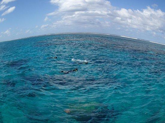 Aquanature: .