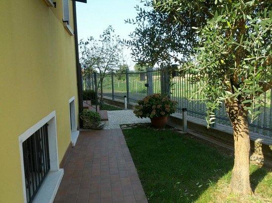 Villa Maria: lawn