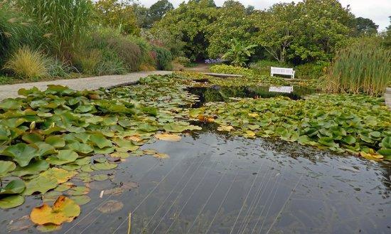 Γουότερφορντ, Ιρλανδία: Mount Congreve Gardens