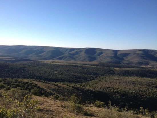 Addo Bush Palace Private Reserve: views of the farm