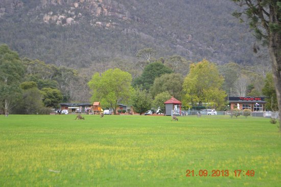 The Grampians Motel & The Views Restaurant : From The entrance