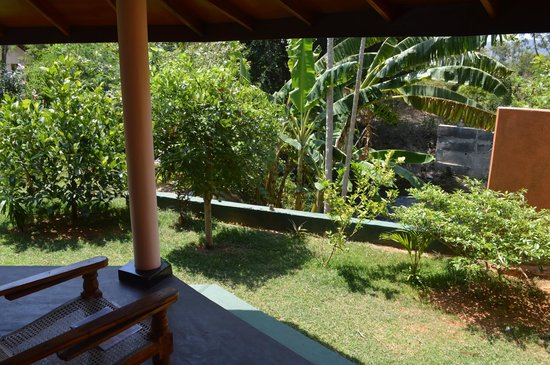Richard's Cabanas: View from the room