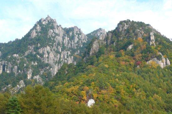 Mt Mizugaki Nature Park: 植樹祭の記念公園から山体