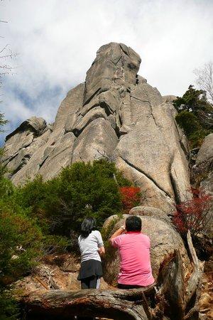 Mt Mizugaki Nature Park: 巨石