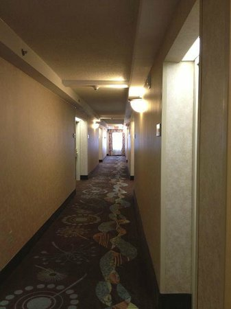 Hampton Inn Ithaca: Hall