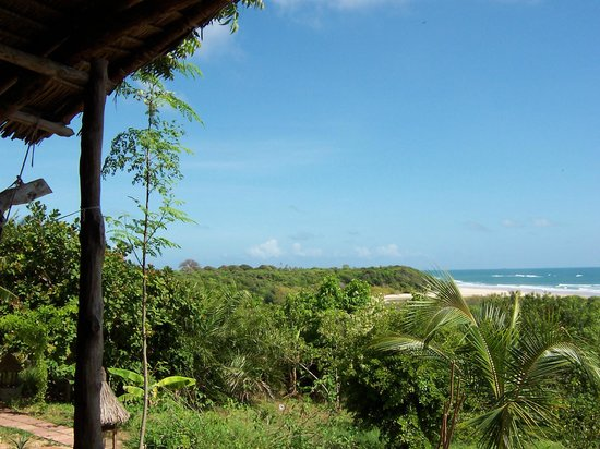 Kasa Beach Hideaway : The view from my cabin