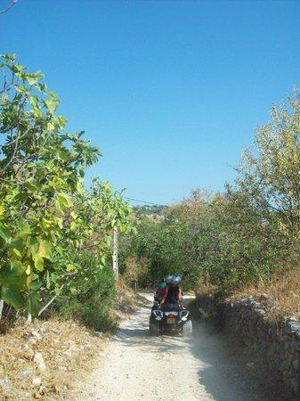 Quad Ventura : Quadventura