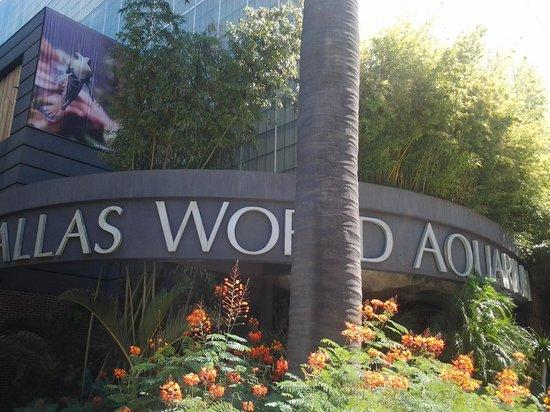 Front Door Picture Of Dallas World Aquarium Dallas Tripadvisor
