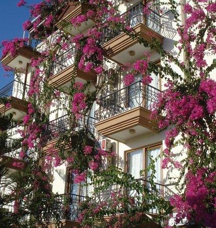 Hotel Kayahan: Otel ön plan..