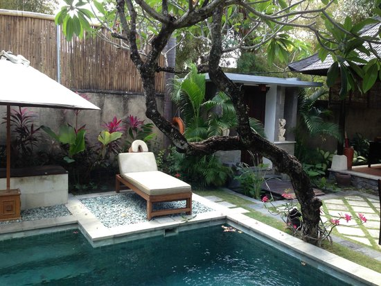 The Sanyas Suite Seminyak: well taken care of garden