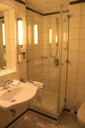 Mercure Grand Hotel Biedermeier Wien: Bathroom needs some repair