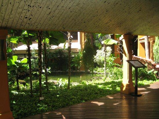 Marriott Hua Hin Resort & Spa: parken/haven.