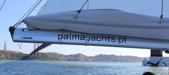 Palmayachts Boat Tours: .