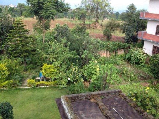 Subaru Panorama Villa: Fresh organic vegetable farm