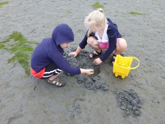 Sandcastle at Birch Bay: Digging for Clams Across Street