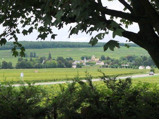 Ermitage de Corton : View