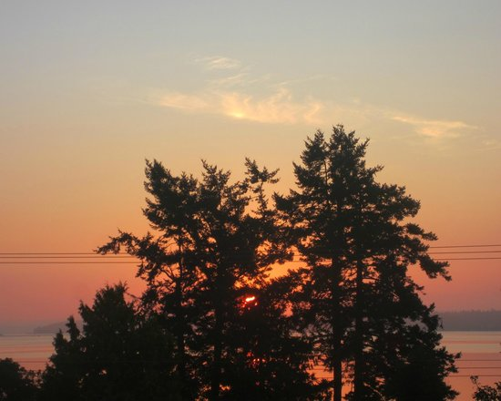By the Sea BnB : The view from the OceanView bedroom window, Sunrise