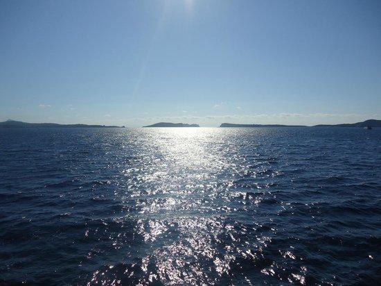 Hostal Apolo: out at sea