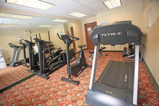 Comfort Inn & Suites: Exercise Room