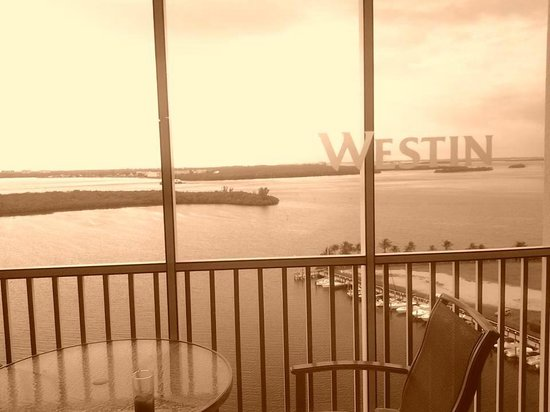 The Westin Cape Coral Resort At Marina Village: From the porch