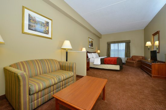 Comfort Inn & Suites: King Suite