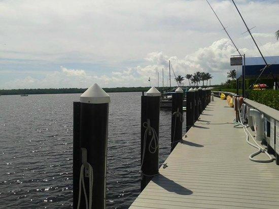 The Westin Cape Coral Resort At Marina Village : At the marina