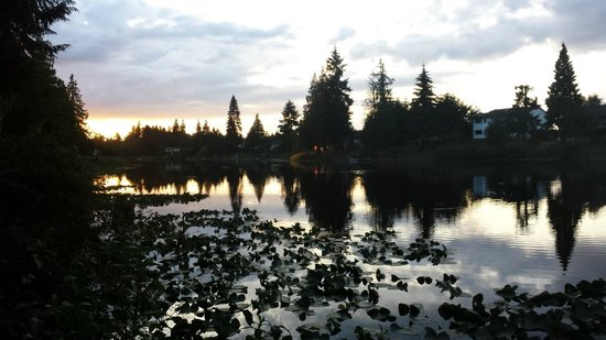 Dockside Bed & Breakfast : View of Cathers Lake at dusk from Dockside B&B