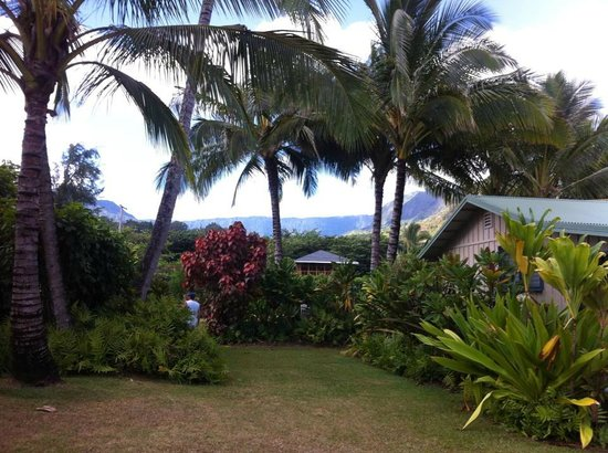 Hale Makai Cottages : beautiful landscaping and views