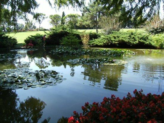 Parco Giardino Sigurta : il laghetto delle carpe