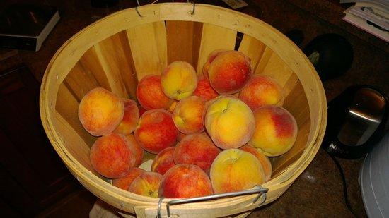 Coloma / St Joseph KOA: Peaches