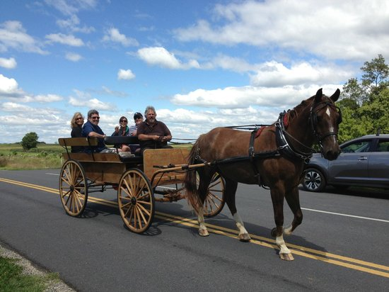 Bonnymeed Farm - Antietam Horse & Carriage Guided Tours: Beautiful day for a carriage ride