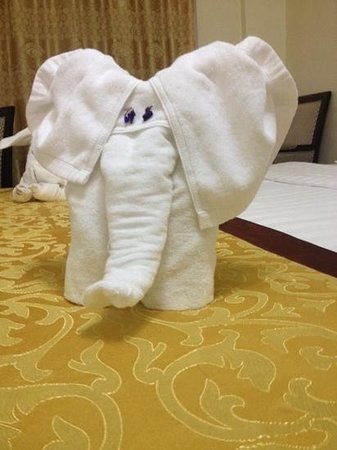 Cedar Hotel: elephant in the room