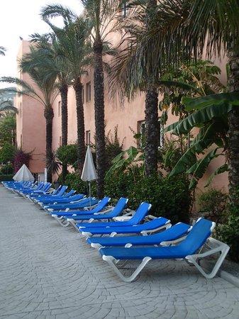 Playacalida Spa Hotel: 2 SOMBRILLAS PARA 20 HAMACAS
