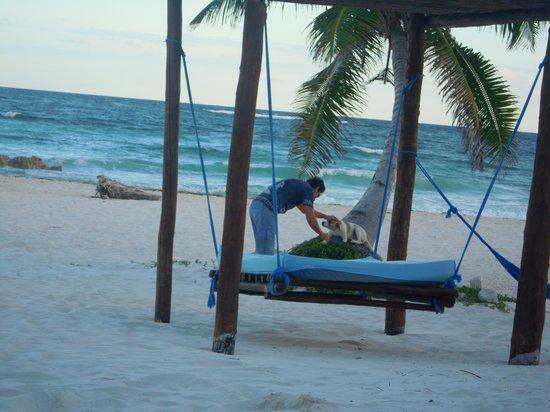 Hemingway Romantic Eco Resort: beach comfort