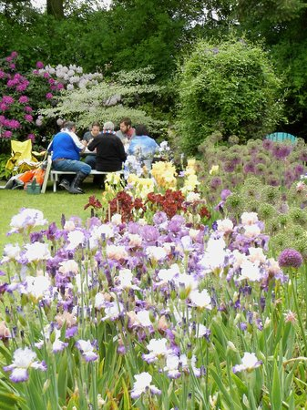 Picnicking In The Display Gardens At Bloom Time Picture
