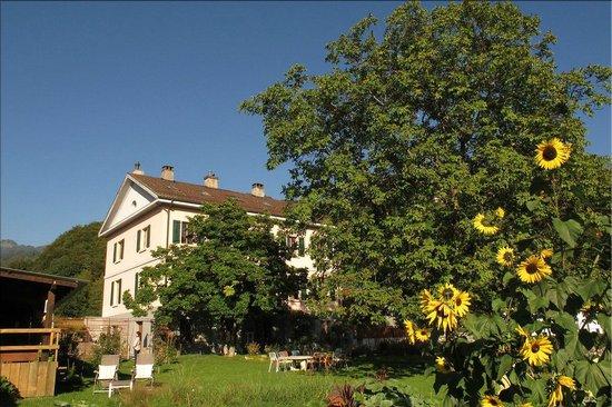 Un grand espace vert photo de la maison du directeur for Prix espace vert